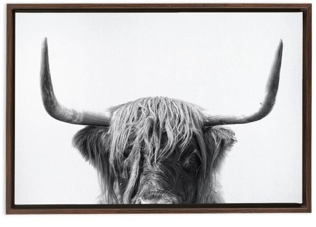 Framed highland cow art print.