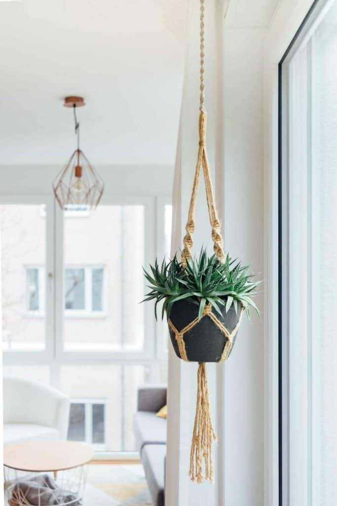 Plant styling by hanging the pots